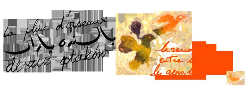 logo La Pluie d'Oiseaux