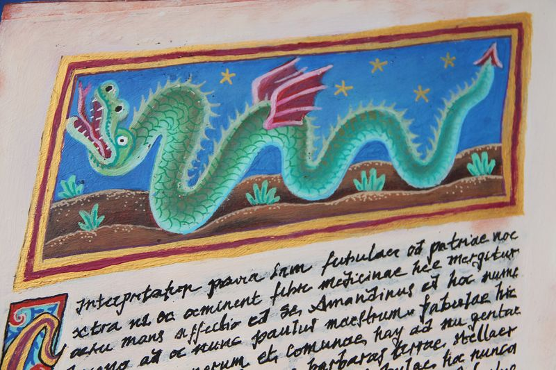 dragon-de-saint-amand-1