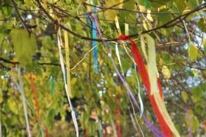 arbre aux rubans à Calais